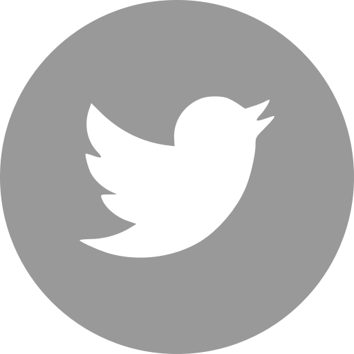 twitter icon grey